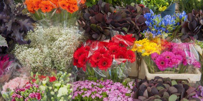 ร้านดอกไม้สุขุมวิท